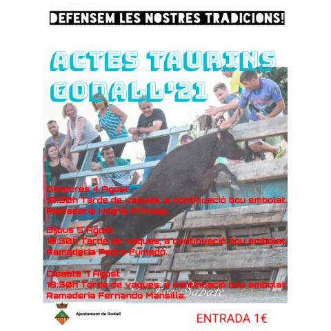 FESTES MAJORS | Actes Taurins, Godall 2021